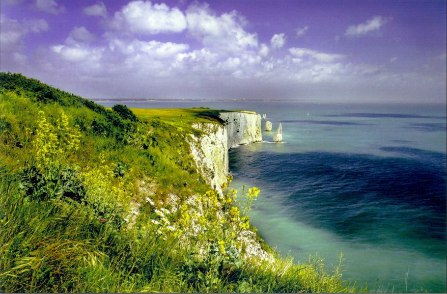 Old Harry Rocks Dorset Jurassic Coast postcard