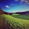 Surrey autumn walkGodalming
