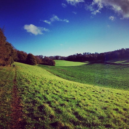 Surrey autumn walk Godalming