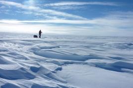 Felicity_in_Antarctica