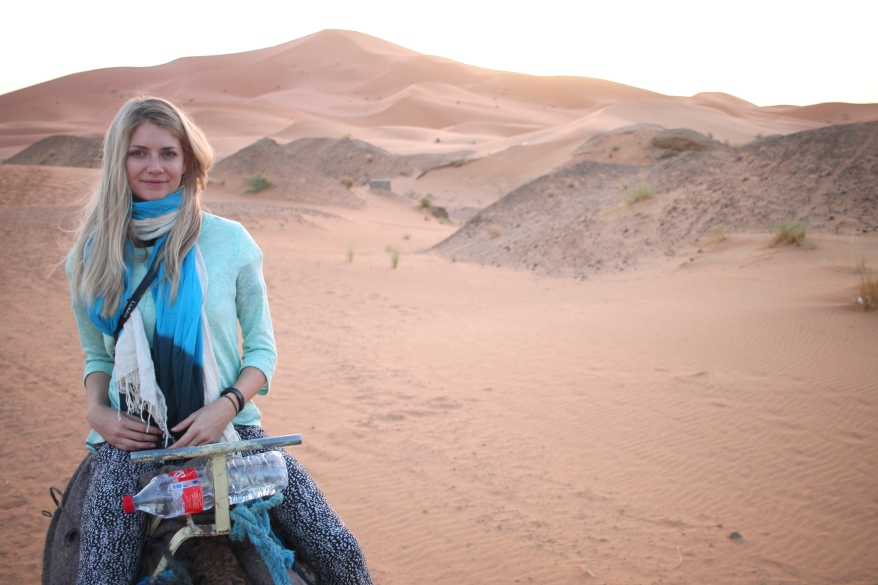 Camels in the Sahara near Merzouga