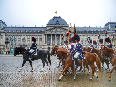 Horses outside Brussels royal palace