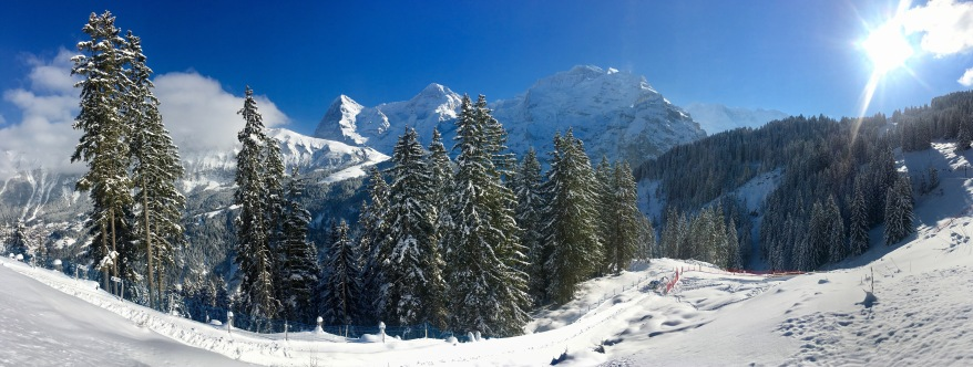 Snowy trees in Murren, Switzerland