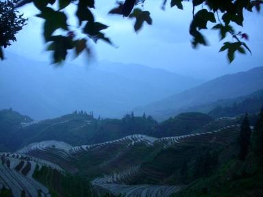 Dragons Backbone Rice Terraces China copy